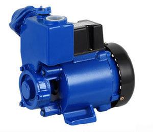 QualitätGp35 kleine Gp-Serien-Wasser-Förderpumpe mit Fabrik-Preis