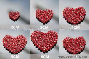Applique di cristallo dei branelli della zona del ricamo 3D del cuore del Rhinestone per vestiti