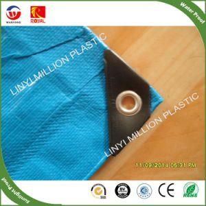 Tecido PE personalizados grandes oleados, a cobertura de plástico à prova de chuva Tarps, disjuntor de vento galpão de plástico