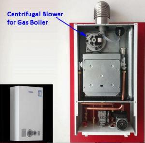 Centrifugaal Ventilator voor de Boiler van het Gas