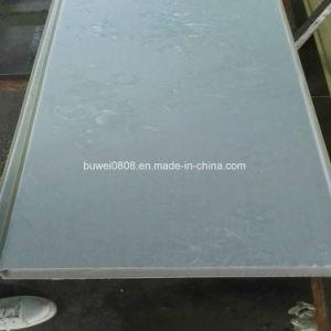 Comités van de Muur van de Materialen WPC van de Decoratie van China de Binnen