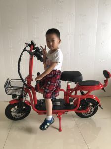 Mini-bicicleta eléctrica com dois Ajustável do Assento