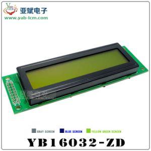 Schermi cinese 160 * della grata LH-Zd della fabbrica 16032 della visualizzazione del modulo LCM dell'affissione a cristalli liquidi schermo dell'affissione a cristalli liquidi della matrice a punti del carattere dello schermo di monocromio 32
