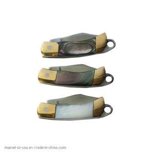 Sobrevivência Ferramenta EDC Colar Shell Mini Chaveiro Facas Faca dobrável