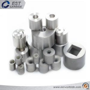 Haut de la qualité de dessin carbure cimenté meurt dans les différents grades