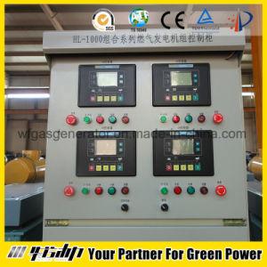 20-500kw aprono il tipo gruppo elettrogeno del gas di CNG/Natural