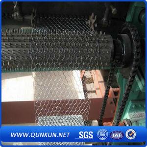 Galvanizado y hexagonal malla de alambre recubierto de PVC