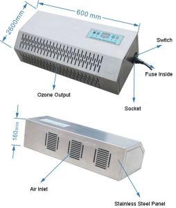 Haupt-Ozon-Generator-Luft-Reinigungsapparat (SY-G009C-III)