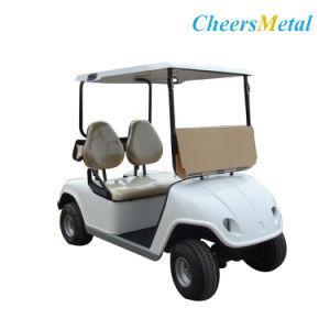 2 places bas prix petite voiturette de golf lectrique personnalis 2 places bas prix. Black Bedroom Furniture Sets. Home Design Ideas