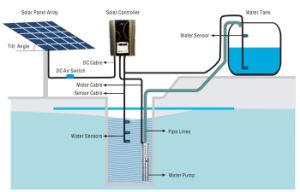 Incoraggia 3 anni della garanzia dell'acciaio inossidabile 304 di pompa buona solare 24V della pompa ad acqua