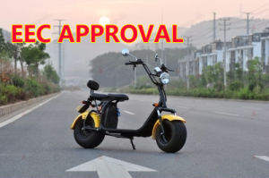60V 2000W einfacher abnehmbarer Batterie-Satz-elektrischer Roller Citycoco