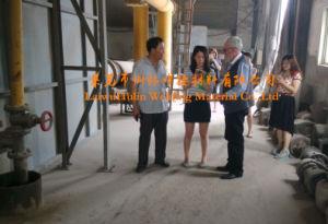 Hj260 LUF van het Lassen voor de Structuur van het Roestvrij staal