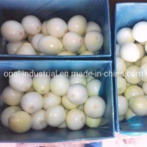 Le fournisseur de vide de l'azote de l'emballage d'oignons jaunes fraîches pelées
