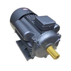Série Tbyl Trifásica Eléctrico Assíncrono/Motor AC Elétrico