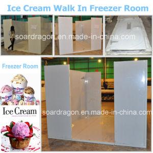Helado de baja temperatura caminando en cámara frigorífica de almacenamiento en frío