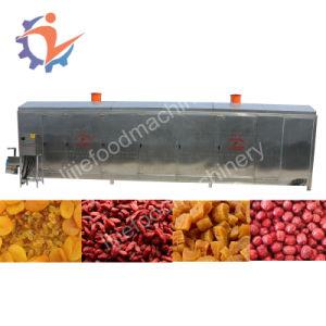 L'air chaud de légumes ou de légumes de la machine sécheur étuve de séchage