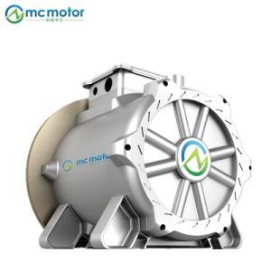 Todo o sistema Brushless Motor ímã permanente com o controlador