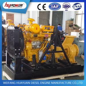 Agricultura Riego Motor Diesel Bomba de agua para la venta