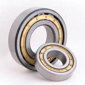 Rolamentos de Roletes de fábrica na China ISO Nj204EV rolete cilíndrico