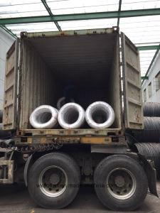 De Draad van het lage Koolstofstaal (SAE1006) om Spijkers te produceren