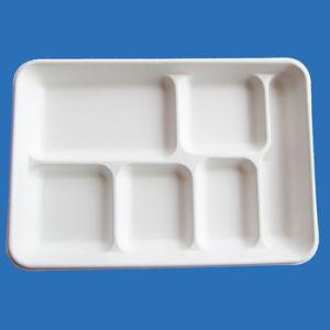 Les plaques de pâte de canne à sucre, Fast Food Panier bac Le bac de vaisselle, plateau de pâte de bagasse, 6 plateau de compartiment