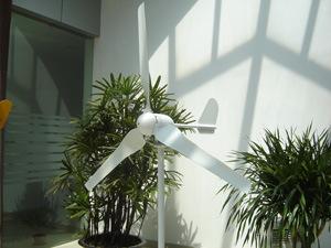 500W Generator van de Wind van de Turbine van de Wind van het huis de Hybride Zonne