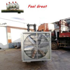Il pollame alloggia il ventilatore di Exaust