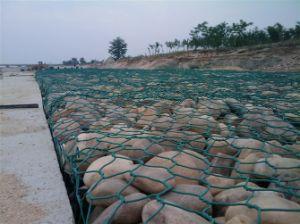 Hexagonal malla de alambre galvanizado (HWM003) /recubierto de PVC de la fábrica de malla de alambre tejido hexagonal