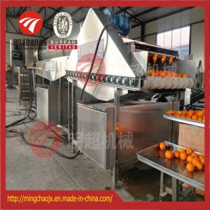 Wasmachine van de Citrusvruchten van de Nevel van het Water van de Apparatuur van het fruit de Schoonmakende