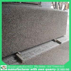 Decoração exterior Azulejos do piso de granito G563 para venda de granito