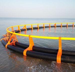 HDPE材料および30-100mの直径の栽培漁業のケージ