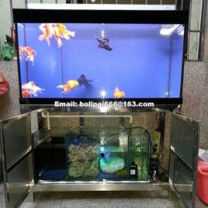 Serbatoio di pesci di vetro rettangolare di successo dell'acquario per decorativo domestico