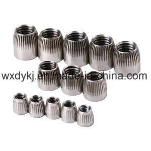 L'écrou conique en acier inoxydable 304