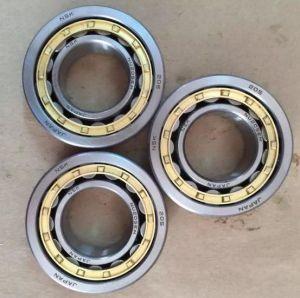 Rodamiento de rodillos cilíndricos de acero cromado de cojinete de rodillos NSK (NU205)