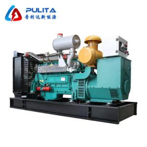 Alta eficiencia de 100kw generadores de gas natural para uso doméstico