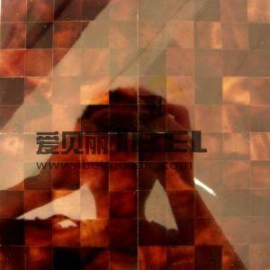 Stylo noir de panneaux de Shell