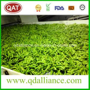 シェルのIQFによってフリーズされる大豆中国製