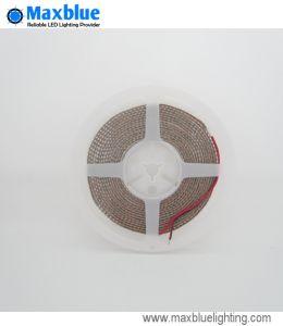 Indicatore luminoso di striscia flessibile della striscia LED di DC12/24V SMD 3528 LED