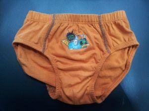 Mutandine Product Type e -Stock in Items Supply Type Child Underwear