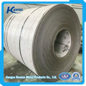 AISI 201 304 strato dell'acciaio inossidabile di rivestimento dei 316 specchi con il prezzo ragionevole