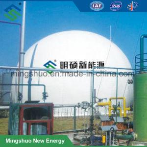 De dubbele Gashouder van de Ballon van de Opslag van het Biogas van het Membraan