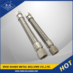 Tubo flessibile unito rapido di /Connector dell'acciaio inossidabile del rifornimento