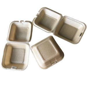 Embalagens de poliestireno biodegradáveis hambúrguer de espuma e caixas de refeição