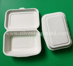 9インチの生物分解性のサトウキビのお弁当箱、環境に優しいクラムシェル