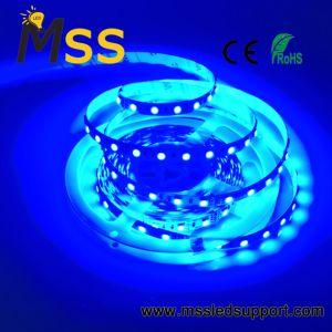 Waterdichte DC12V of 24V LEIDENE van SMD 5050 Lichte Multi RGB LEIDENE van de Strook Strook 24V