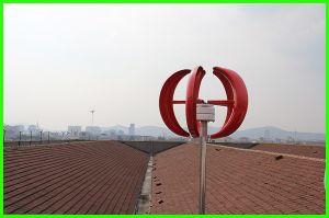 générateur de turbine vertical de vent de l'axe 100W pour l'usage à la maison