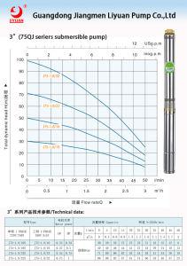 Liyuan monofásico 50Hz a 60Hz pozo profundo bomba de agua sumergible Solar