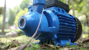 Homeuse (QB60)를 위한 세륨을%s 가진 0.5HP 전기 주물 말초 펌프