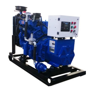 China-Lieferanten-Lebendmasse-Generator für Vergasung