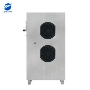 sistema di pulizia dell'acqua dell'ozono 30g, depuratore di acqua dell'ozono